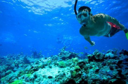 Wisata Laut untuk Diving Snorkeling di Indonesia
